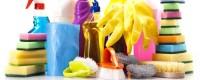 Looking for Need beer glass cleaner? -Horecavoordeel.com-